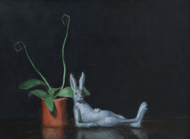 Flower and rabbit